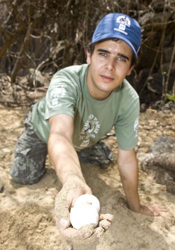 O biólogo monitora ninhos, principalmente, da tartaruga de pente. (Foto: Arquivo Pessoal)
