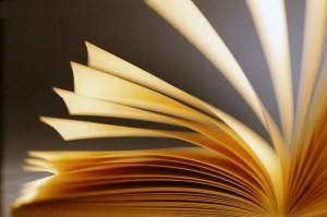 livro-300x199