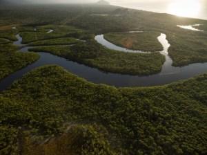 Rio e floresta tropical no Brasil