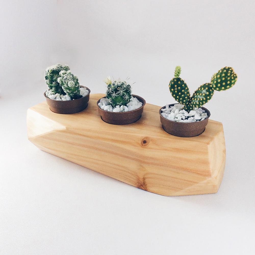Jardim Minimal - Wood Mood